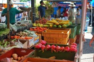 darwin markets australia