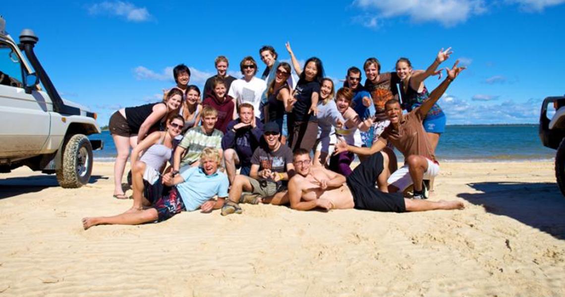 Dingos Fraser Island Safari