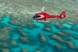 down under cruise and dive barrier reef scenic flight day trip cairns australia