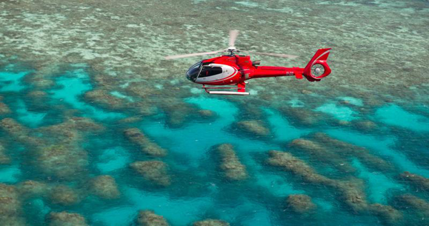 Great Barrier Reef Day Trip Inc Scenic Flight