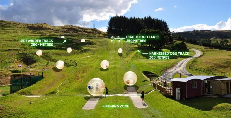 Zorbing With Ogo