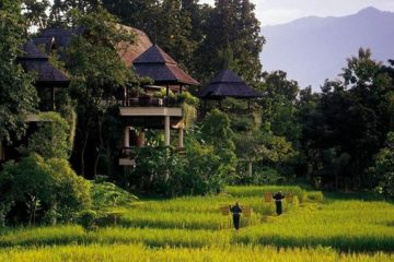 chiang mai tour thaintro thailand backpacker group tour south east asia