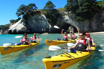cathedral cove kayak tour new zealand north island half day