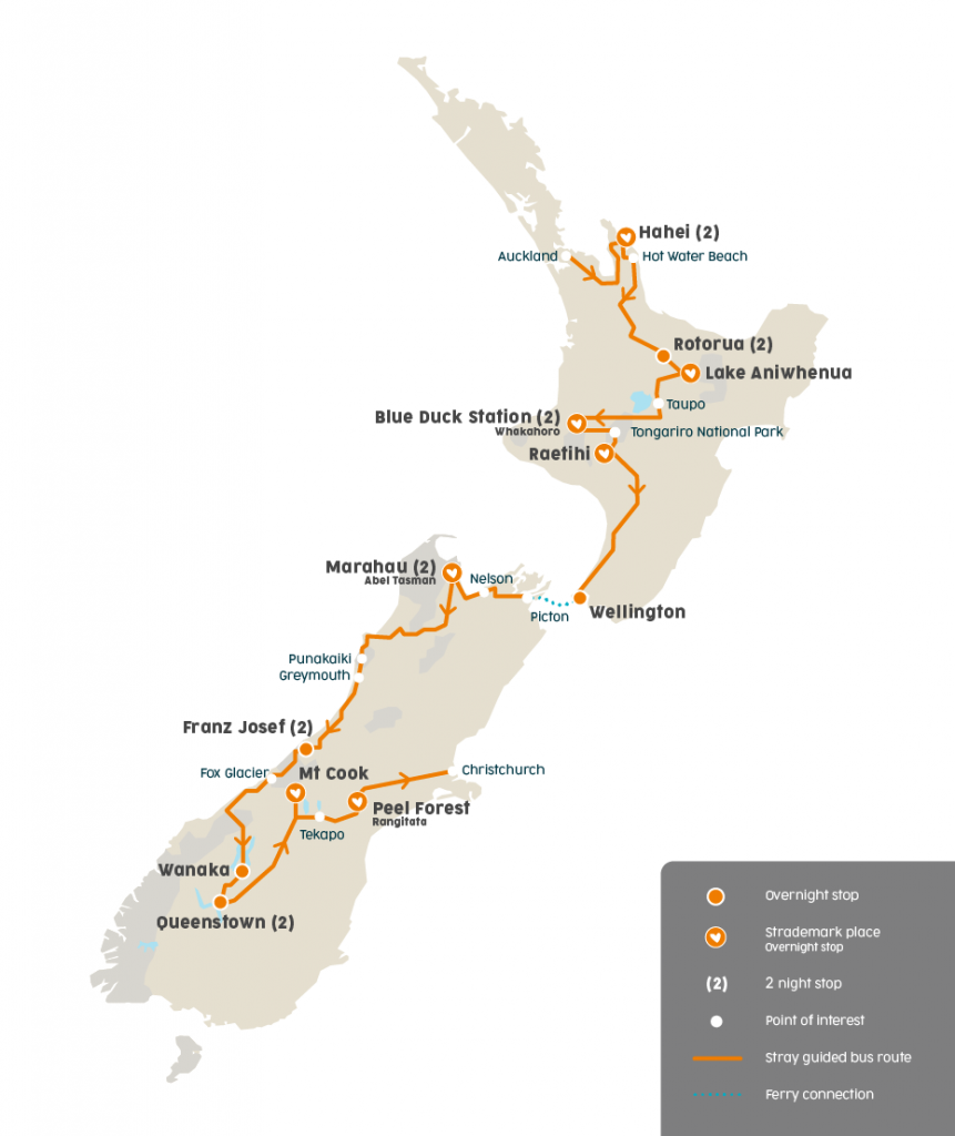 stray New Zealand short moe bus pass freestyle hop on hop off north island South Island nz backpacker
