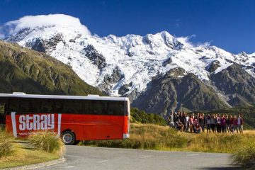 stray new zealand hop on hop off bus pass kiwi backpacker