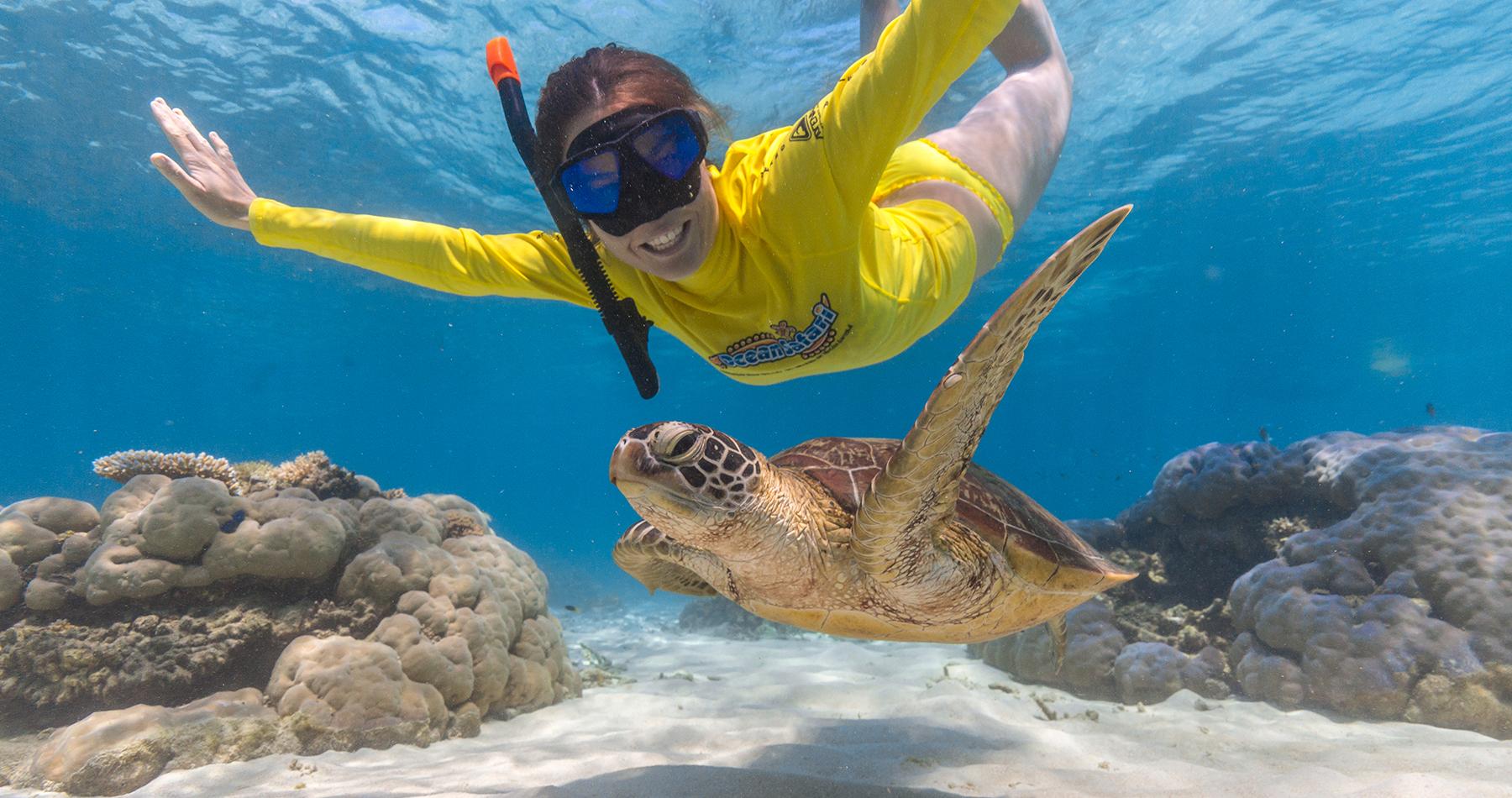 Cape Tribulation Snorkel Trip With Ocean Safari Rtw