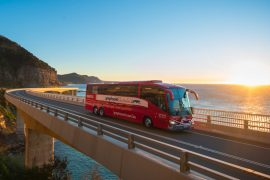 greyhound whimit bus pass australia backpacker east coast travel