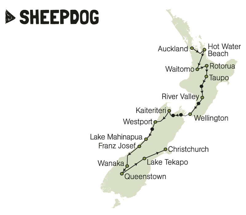 kiwi experience bus pass sheepdog new zealand
