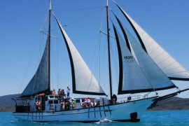new horizon whitsunday sailing adventure tour airlie beach australia