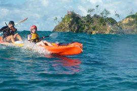 sea kayak byron bay cape byron kayaks dolphin australia backpacker