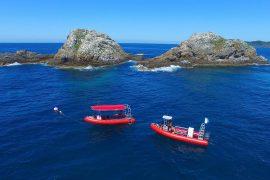 scuba dive in byron bay julian rocks australia padi ssi east coast