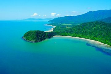 cape tribulation day tour cairns australia queensland adventure company
