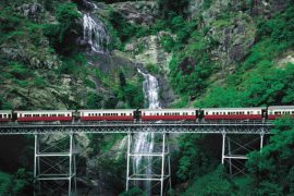 kuranda scenic railway skyrail cairns australia tour transfers