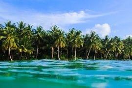 mentawai islands surf adventure surf camp mojo surf indo indonesia bali learn to surf